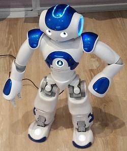 HuaweiRobot
